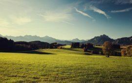 STF suspende norma que liberava compra de terras por estrangeiro