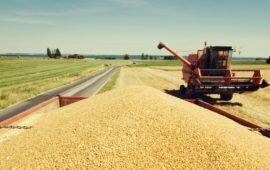 Em breve serão abertas inscrições para obtenção do selo Agro+ Integridade
