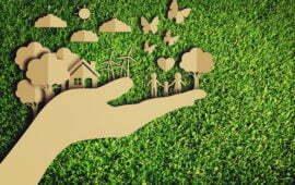 Ministério do Meio Ambiente disponibiliza Sumário de Informações sobre salvaguardas de REDD para contribuições