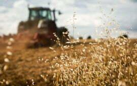 Incra edita Instrução Normativa sobre aquisição e arrendamento de imóvel rural por estrangeiros